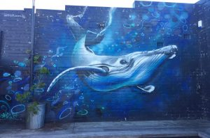 Always dive whale wall mural.
