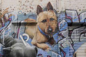 Dog Portrait Wall Art
