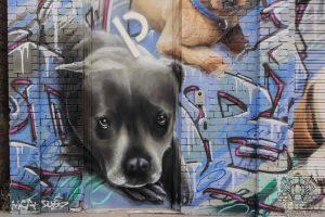 Portraits of dogs on garage door.