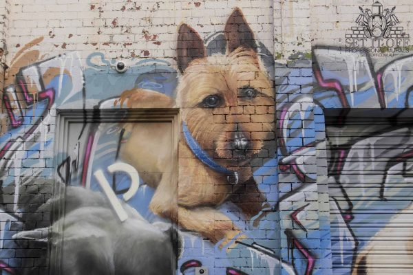 Dog Portrait Wall Art